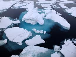 Davenport laroche and the arctic ice